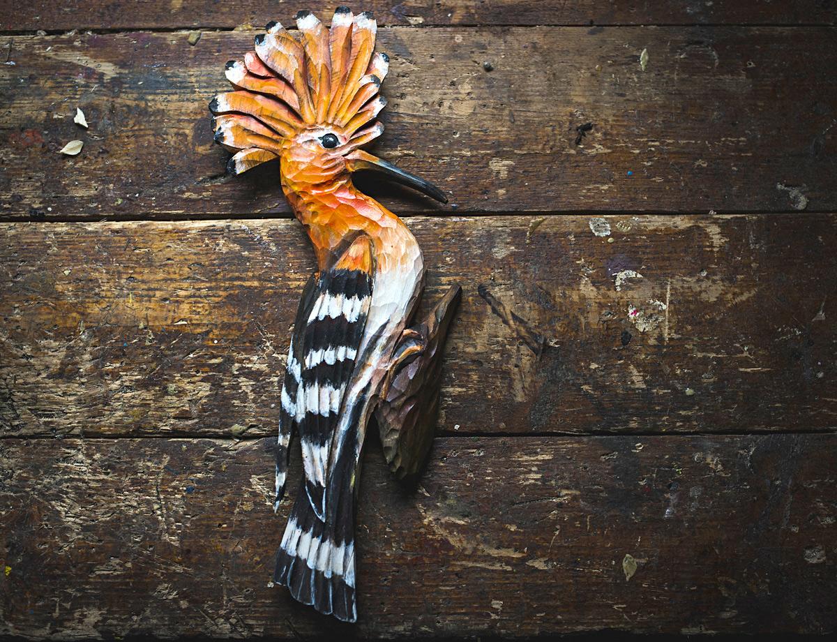obrázky skutečných ptáků